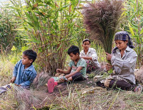 Indien: Fluch der Entwicklung
