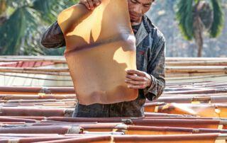 Kautschuk ist ein begehrter Rohstoff für die Industrie auf der ganzen Welt.