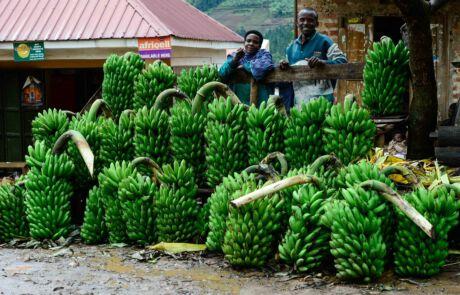 Zwei Menschen verkaufen Bananen