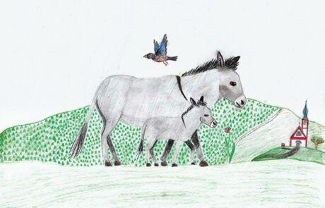 zwei Esel auf dem Weg nach Bethlehem
