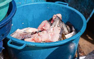 An der Anlegestelle wir der Fisch verkauft oder vor Ort weiterverarbeitet.