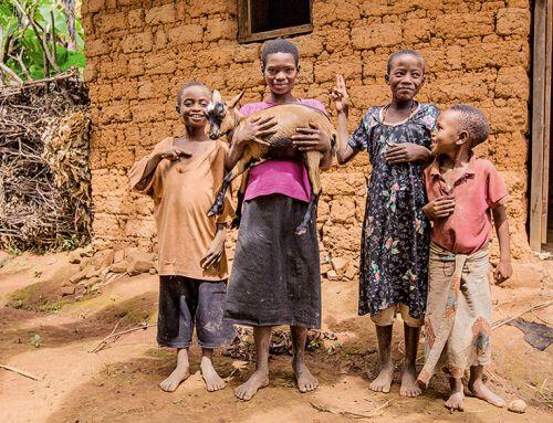 Burundi: Wie Ziegen Leben verändern